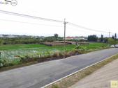 林內濁水溪四季豆:42567印.jpg