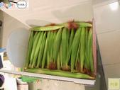 紅鬚玉米筍-安全用藥(台灣農產行銷網-台灣阿榮):紅鬚玉米筍精選禮盒2用印.jpg