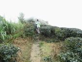 雲林古坑華山到二尖大尖山路景色:IMG_4521.JPG