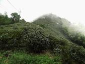 雲林古坑華山到二尖大尖山路景色:IMG_4511.JPG