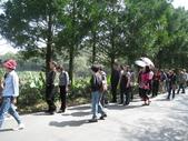 桃米生態村-團體來訪0002:0002 (13).JPG