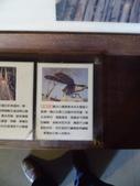 桃米生態村-桃米社區-生態-社區-濕地-埔里:IMG_1244.JPG