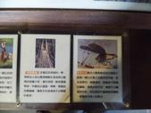 桃米生態村-桃米社區-生態-社區-濕地-埔里:IMG_1246.JPG