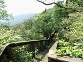 雲林古坑華山到二尖大尖山路景色:IMG_4491.JPG