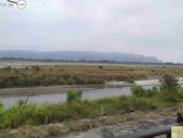 林內濁水溪四季豆:42571印.jpg