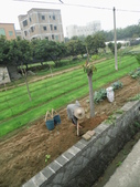 中國福建廈門大嶝小鎮及同安區風景:IMG_6783.JPG