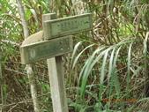 花蓮太魯閣國家公園:IMG_3228.JPG