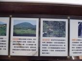 桃米生態村-桃米社區-生態-社區-濕地-埔里:IMG_1249.JPG