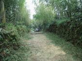 雲林古坑華山到二尖大尖山路景色:IMG_4498.JPG