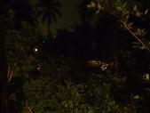 林內林北社區御香園庭園燈修復過程:IMG_2318.JPG