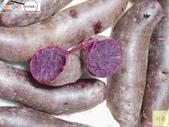紫色(心)地瓜-台灣農產行銷網(台灣阿榮):IMG_3517 (2)用印.jpg