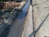 林內濁水溪灌溉的荔枝樹正在結果,等待認養哦。:YP20140111112602112.jpeg