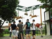 台灣宜蘭幾米主題公園:IMG_3176.JPG