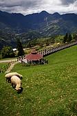 09-0711 南投 - 合歡山 + 清境農場:090711_100.JPG