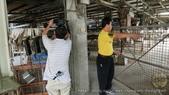 2015-05-05華視新聞採訪熊的蛋:small2015-05-05華視新聞採訪熊的蛋 (31).JPG