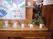 2008 04 日本-北海道:北海道000106.jpg