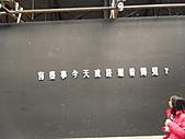 110212高雄燈會:SAM_5592.JPG