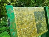 190616 內灣 馬胎古道:DSCN9850.JPG
