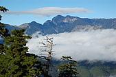 1119-22南湖大山:DSC_0365.JPG