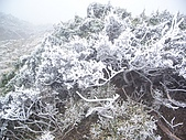 Meteor Lake. Xiangyang & Sanch:嘉明湖07.jpg