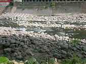 971026苗栗野外:河床的大小礫石JPG