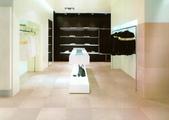 一順歐洲時尚磁磚~牆篇:蘿娜 (1)(30x60)磁磚,一順,瓷磚,歐洲,進口,外牆,地磚,壁磚,復古磚,設計浴室,臥室,臥房,客廰,裝潢,裝修,陶磚,