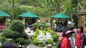 台北奧萬大:花園區10.JPG