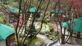 台北奧萬大:花園區14.JPG