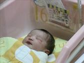 ●99.05.01生產-出生第1天●:1102340899.jpg