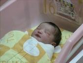 ●99.05.01生產-出生第1天●:1102340894.jpg
