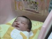 ●99.05.01生產-出生第1天●:1102340895.jpg