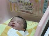 ●99.05.01生產-出生第1天●:1102340896.jpg
