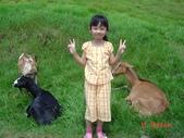 南投縣仁愛鄉:South Taiwan Trip28(little niece).jpg
