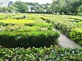 竹南運動公園 & 頭份運動公園:P_20190602_093652_1_HDR_p.jpg