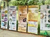 竹南運動公園 & 頭份運動公園:P_20190602_102546_1_HDR_p.jpg