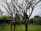 逸仙公園:P1010774.JPG