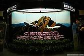 2009日本北海道之旅 DAY1:台灣嗎?