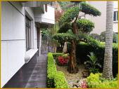 上林苑景觀:2 拷貝.jpg