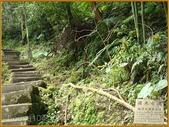 【高林閣一樓景觀豪邸】:糶米古道1 拷貝.jpg