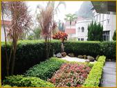 上林苑景觀:2-1 拷貝.jpg