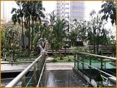 信義香榭:庭院1 拷貝.jpg