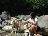 :dogs and hualian 2010 for blog 4_img_62.jpg