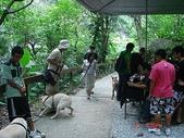 :dogs and hualian 2010 for blog 4_img_65.jpg