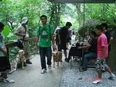 :dogs and hualian 2010 for blog 4_img_64.jpg