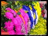 台南市白河區白河聖帝會關聖帝君歲次癸巳年玖載迎慶平安遶境大典(2):白河聖帝會233.jpg