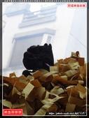 高雄市鹽埕區北極泰靈殿池府王爺鎮台六十週年啟建五朝祈安清醮遶境大典(1):鹽埕區泰靈殿025.jpg