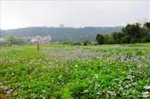 <2010.2~3月>32行館貴婦下午茶、宜蘭羅東林場、台北奧萬大、桃園藍月山莊:1695854479.jpg