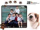 畢旅照片:PhotoCap_004.jpg