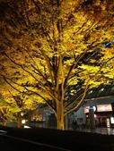 2012年末。苦中作樂@東京:101APPLE_IMG_1941.jpg
