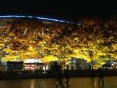 2012年末。苦中作樂@東京:101APPLE_IMG_1944.jpg